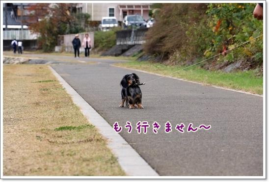 3V9A1298.jpg