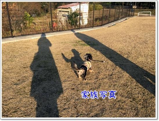 IMG_9968.jpg
