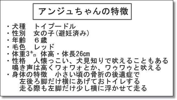 20151030-08.jpg