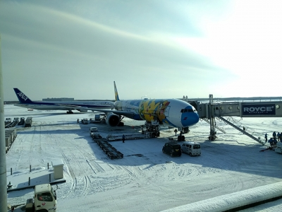 千歳空港は雪
