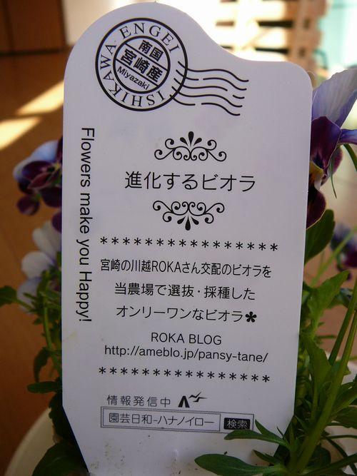 Kusukusuさん 購入苗7