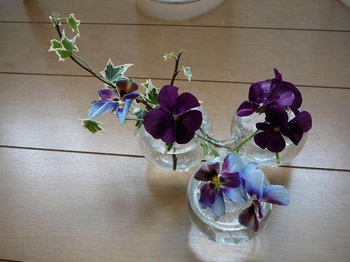 ビオラ花瓶へ