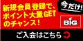 BIG_point_bn_120x60_.jpg