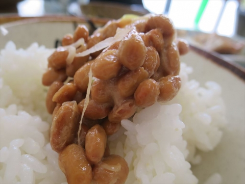 津軽屋食堂 (15)_R