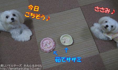 20151104_11.jpg