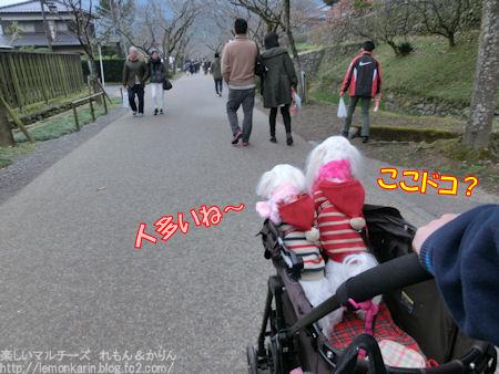 20151211_2.jpg