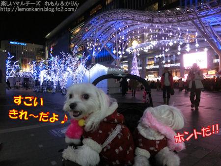 20151215_2.jpg