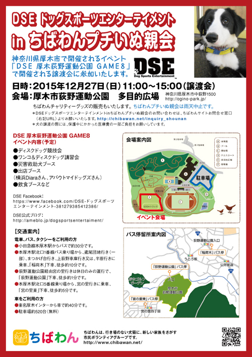 dse_poster.jpg