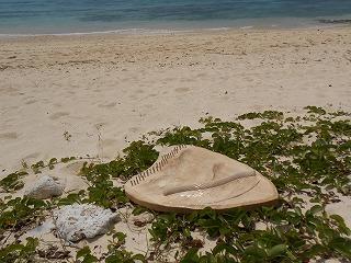 s-2013冬至・2014春分 沖縄 など 081