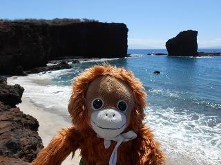 ハワイ 2013.8 173
