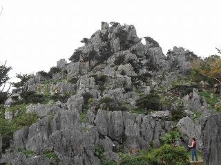 s-沖縄 2016・2 081