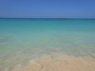 ハワイ 2013.8 362