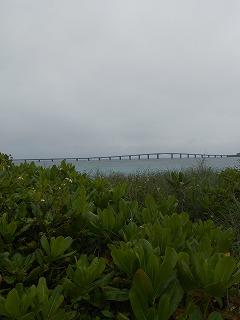 s-沖縄 2016・2 013
