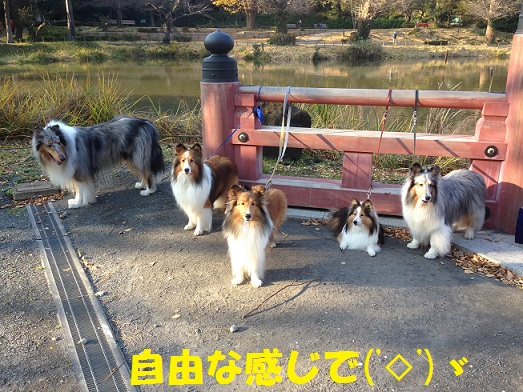金沢文庫3