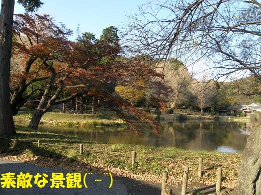 金沢文庫2