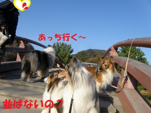 金沢文庫7