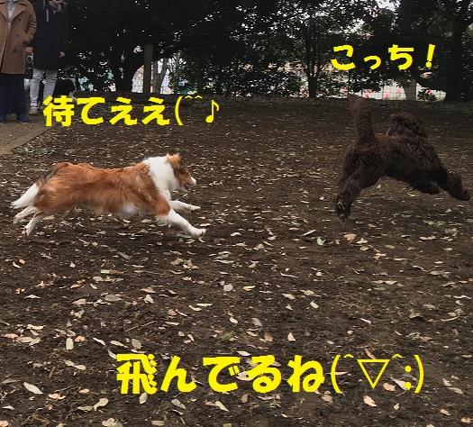 きいちゃん