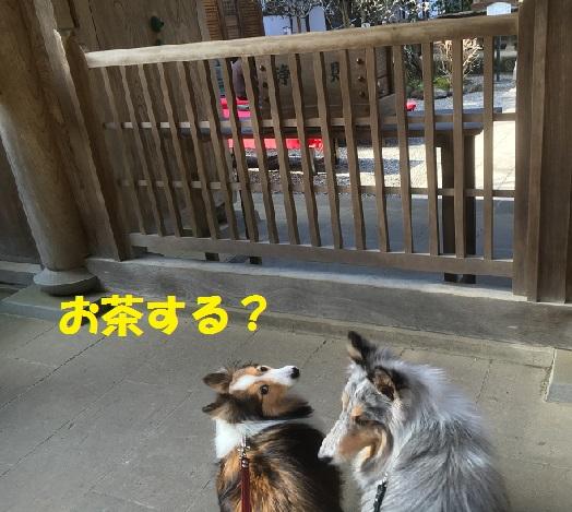 円覚寺95