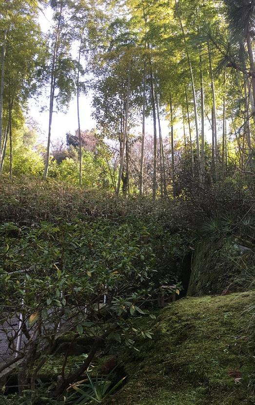 円覚寺993