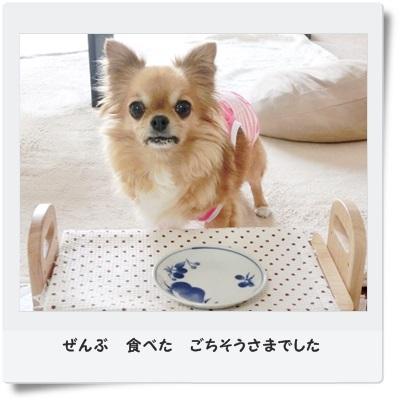 CIMG7462.jpg