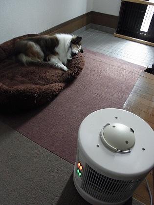 専用暖房機