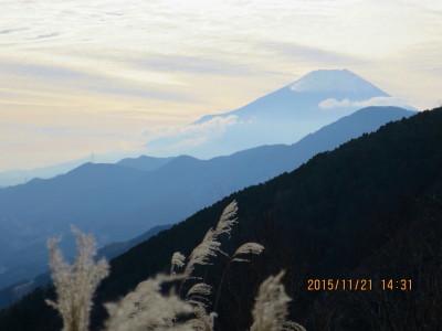 菜畑山から富士山