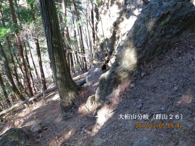 大桁山への近道分岐(境界石標群山26)