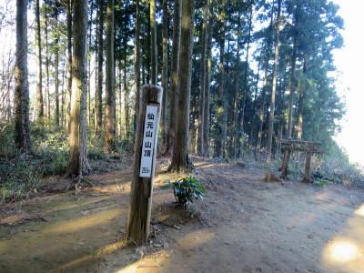 仙元山山頂