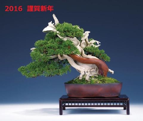 2016新年 (480x405)