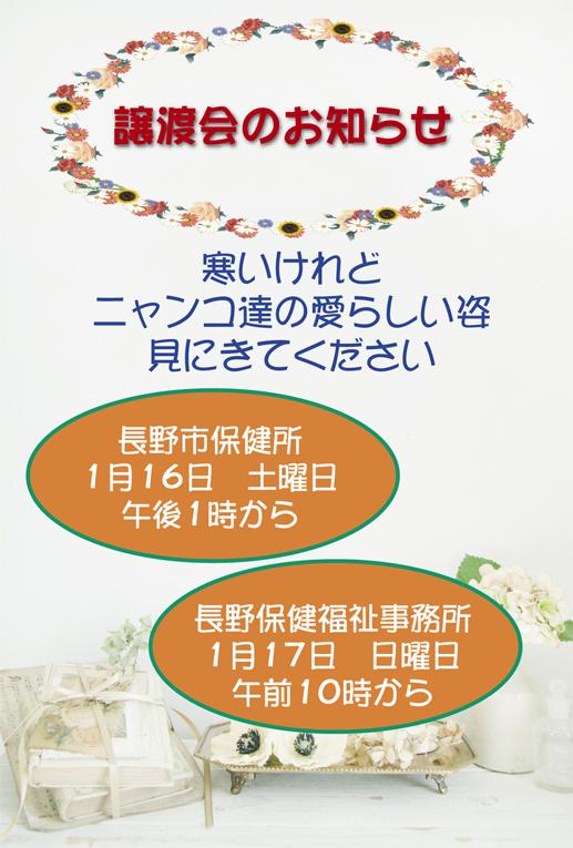 20160116.jpg