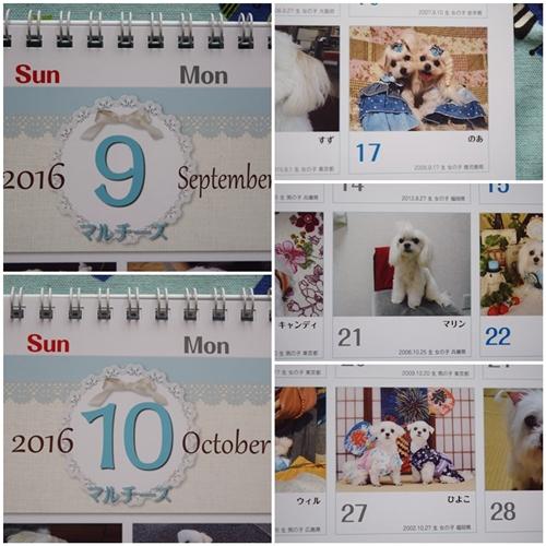 カレンダー14