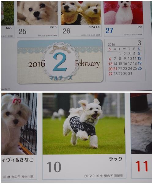 カレンダー16