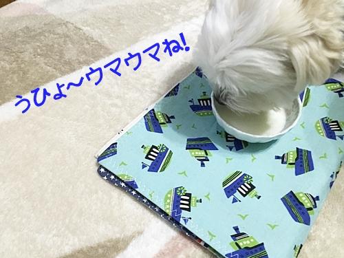 ヤギミルク7