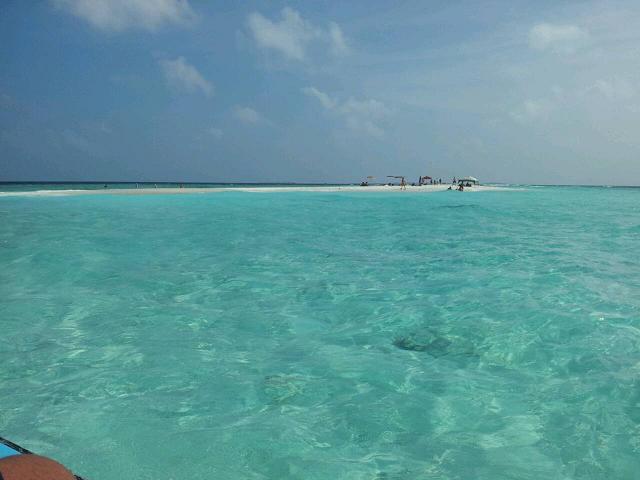 キラキラ海