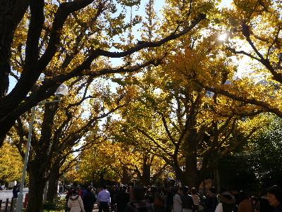 2015結婚記念日10