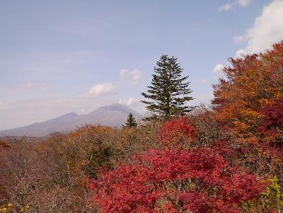 2015軽井沢2−19