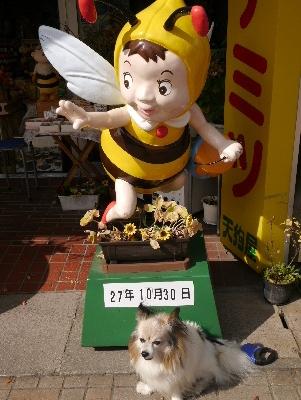 2015軽井沢3−43