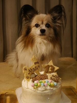 2016バースデーケーキ1