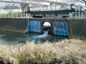 飯山満川流入地点