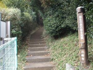 緑道入口1
