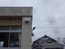 小山小学校(避難所誘導灯)