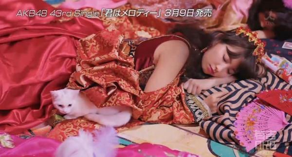 nishi (3)