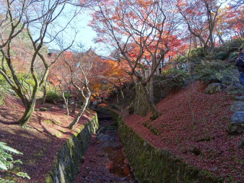 東福寺17