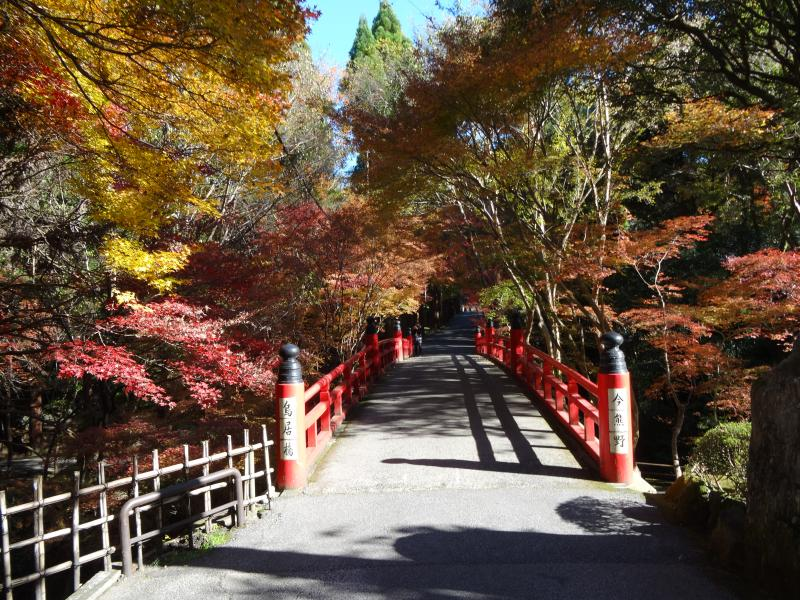 今熊野観音寺1