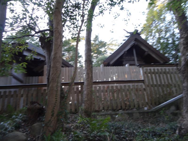 自凝島神社4