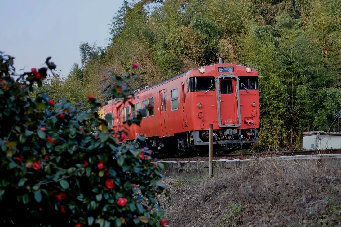 DSCF3491 (1100x733)