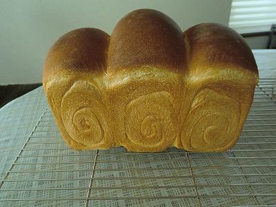 食パン1-31