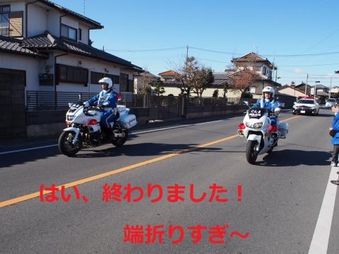 P1013207.jpg