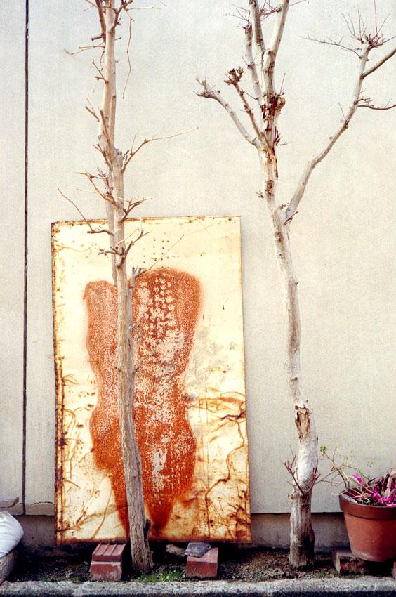 木とプレート