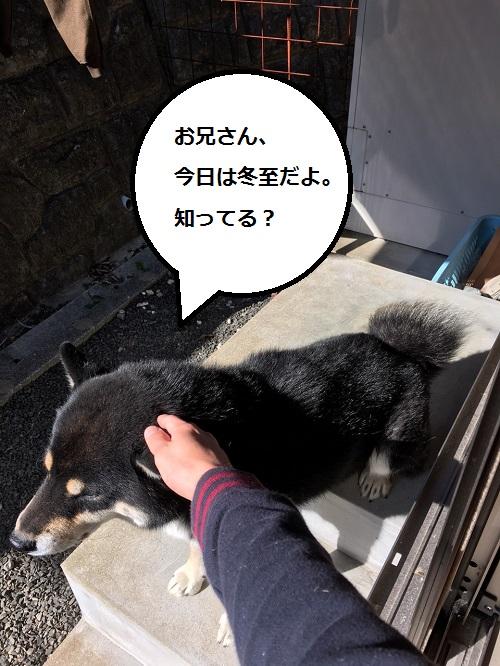 まるちゃん2015122201